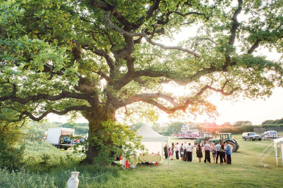 Overall landscape of wedding reception including a large tree with a wedding fairground in the distance at a relaxed country Sussex wedding