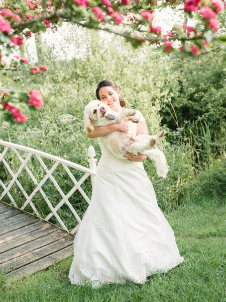 Bride cuddling wedding dog with stripy tie framed by pink blossom infant of a white bridge at a relaxed country Sussex wedding