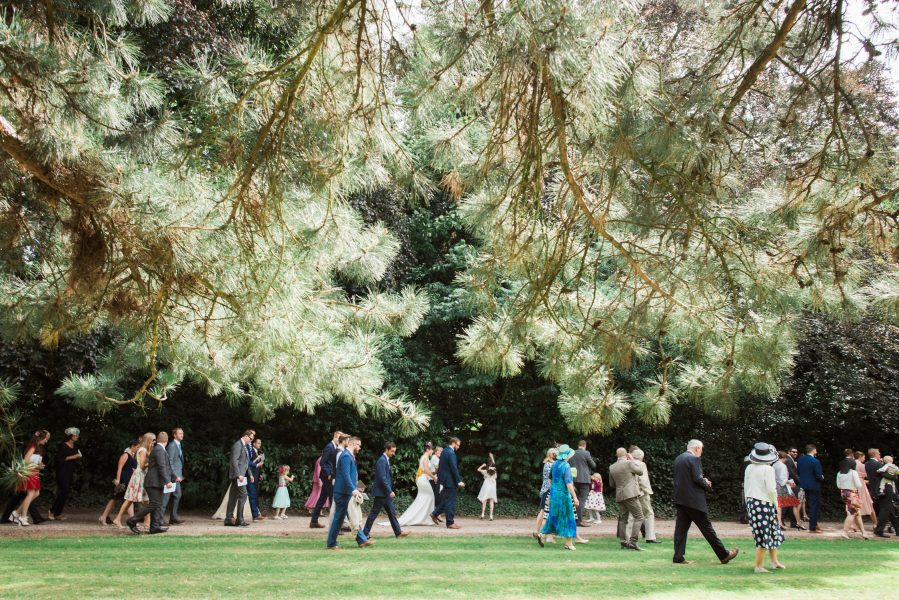 Wedding guests walk along a path framed by large pine tree