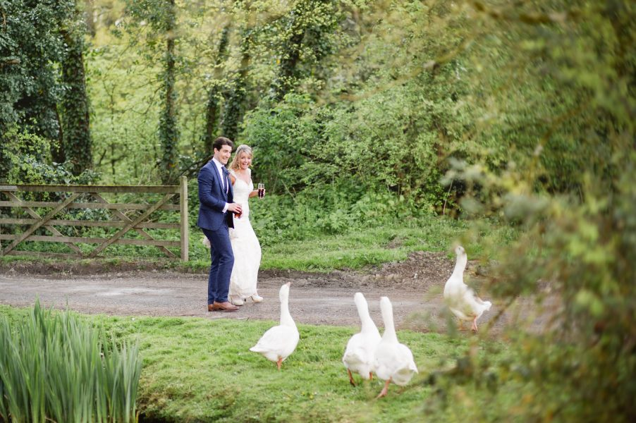 Fine art portrait of Bride and Groom running away from a gaggle of geese chasing them next to a lake and woodland in Outwood Surrey