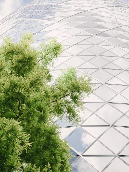 Close up of Gherkin with tree leaves of a London wedding