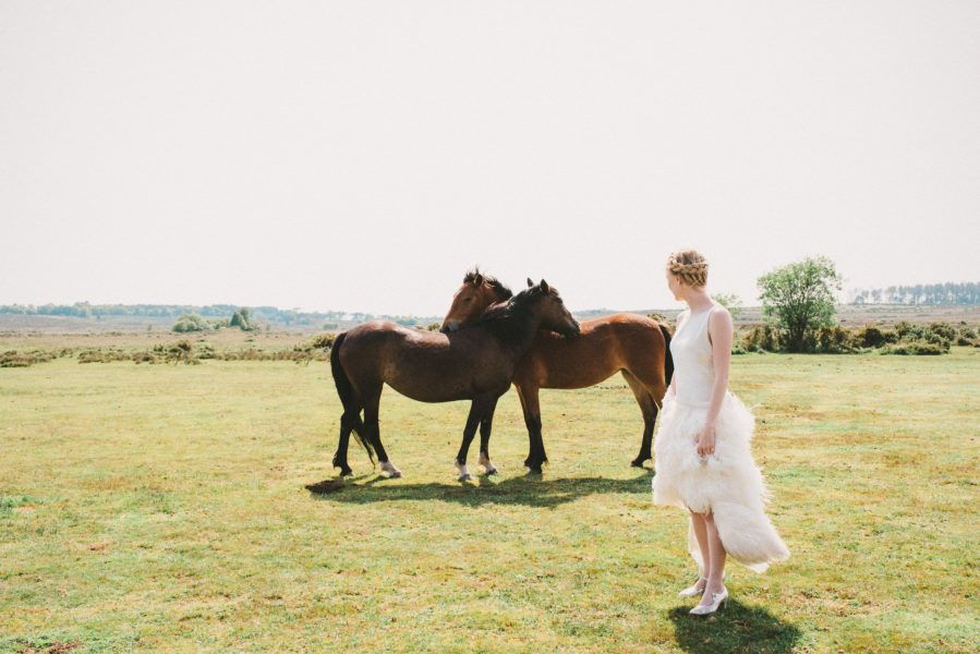 Dreamy Fine Art image of a Bride walking on heathland in an ostrich feather Tara Bradley-Birt dress with two New Forest ponies in the background nuzzling each others back