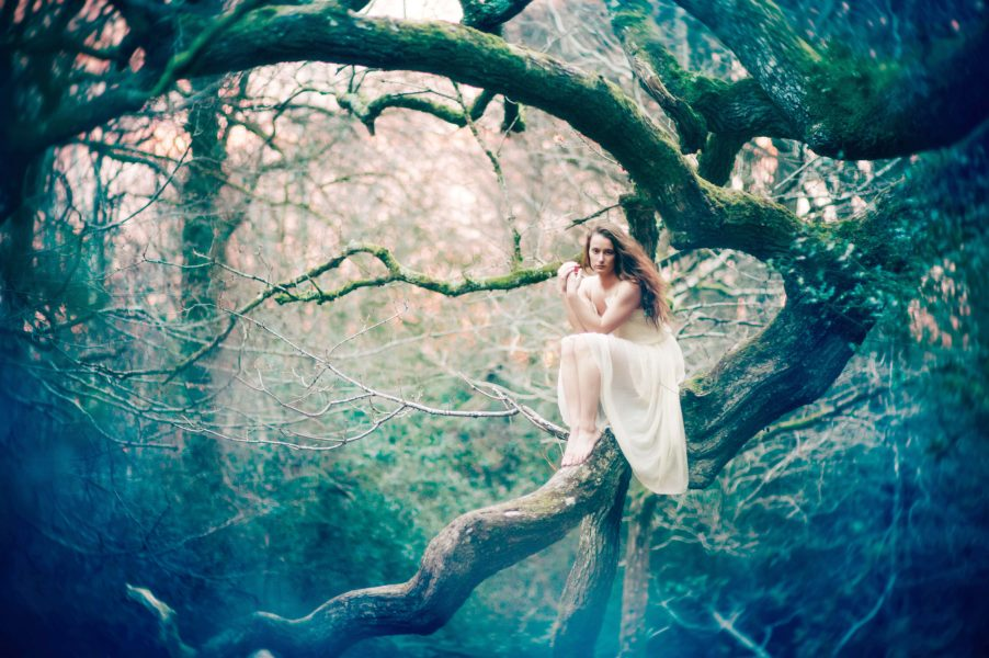 New Forest Dream Catcher shoot model in white dress sitting on a tree trunk with a sun set in the background