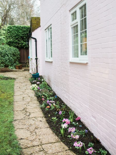 Granny's pink cottage wall with primrose flowers in flowerbed Hampshire