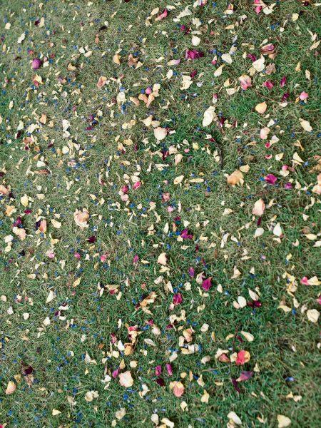 Rose petal Wedding confetti on grass at Studland Bay Dorset