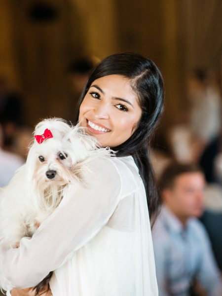 Wedding dog with a red bow decoration